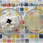 How to Easily Make Greek Yogurt from Regular Yogurt (and save BIG!)