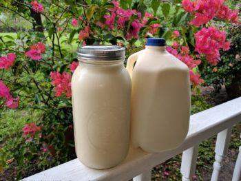 5 Tips for Long Lasting Raw Milk Freshness