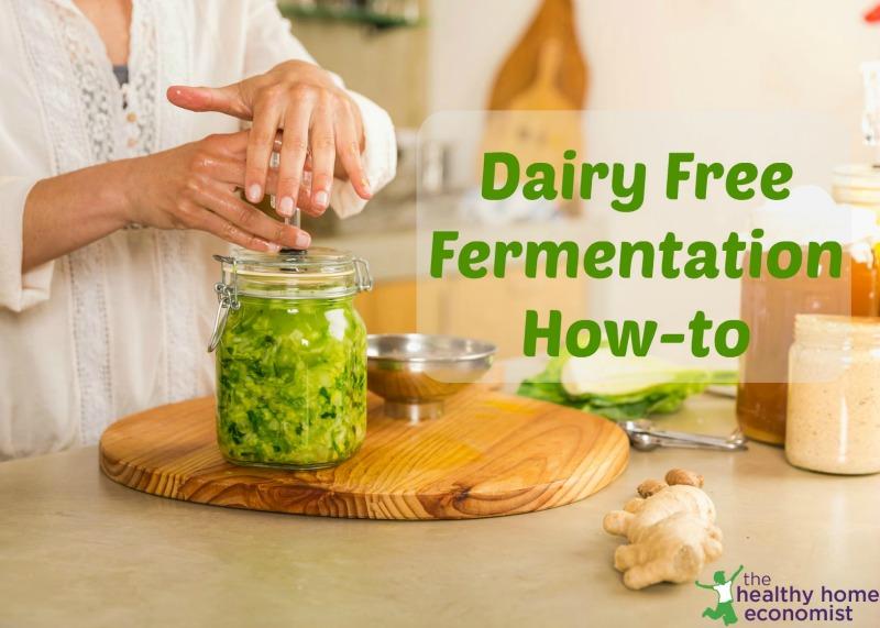 dairy free fermentation