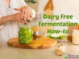 Dairy Free Fermentation: How to Ferment Without Whey