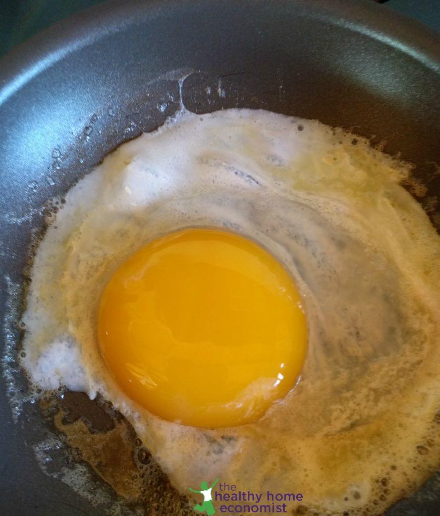 goose egg yolk