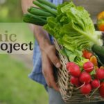 The Real Organic Project
