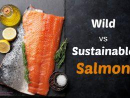 wild vs sustainable salmon
