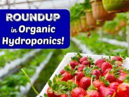 roundup in organics