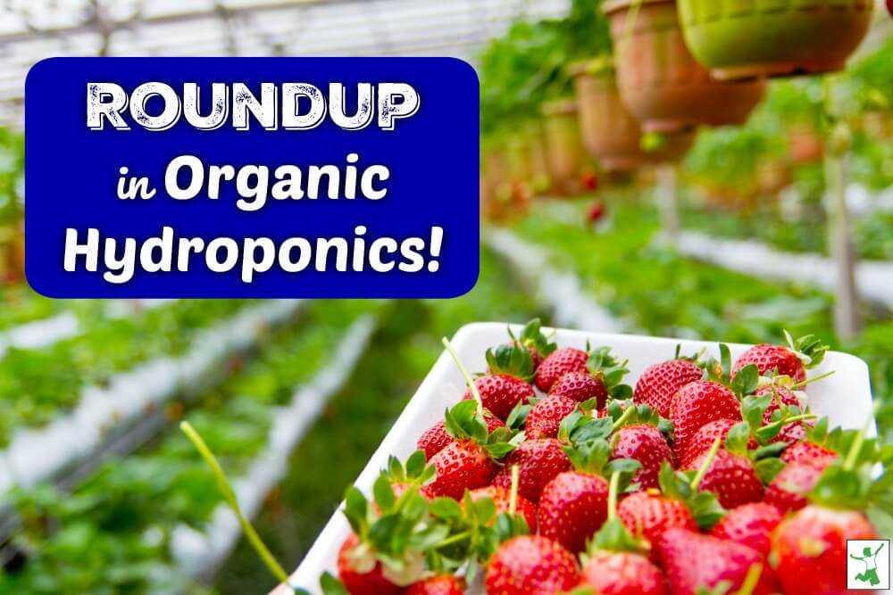Avoiding Glyphosate? Don't Buy Organic Hydroponics!