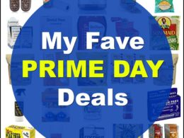 Sarah's Favorite Prime Day Deals (25+ Ideas) 1