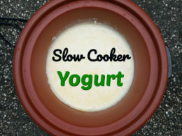 Slow Cooker Yogurt. Easy + Better than ANY Store Brands