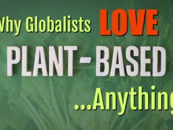 plant based globalists