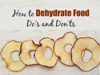 diy dehydrated food