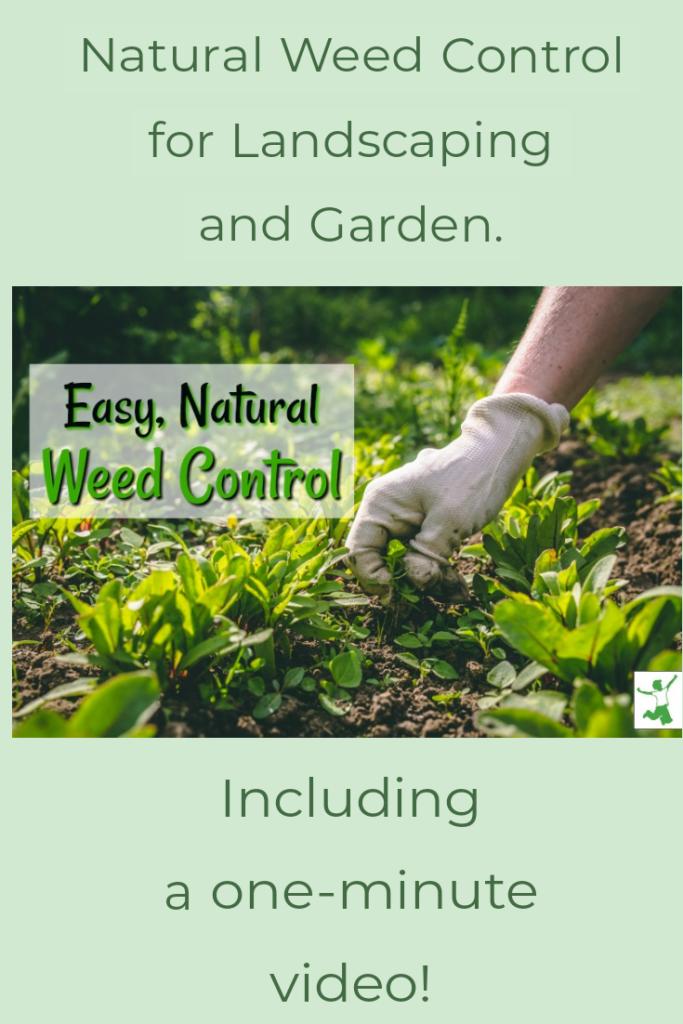 no herbicide weed control