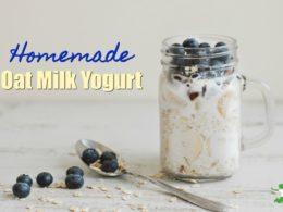 oat milk yogurt in a mug with blueberries on top