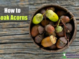acorns in a bowl on a wooden table