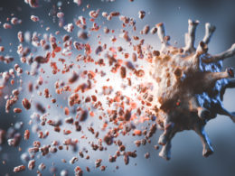 immune system reaction to antibody dependent enhancement